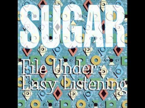 Sugar - Company Book