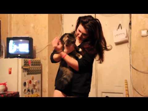 Наташа мучает кошку