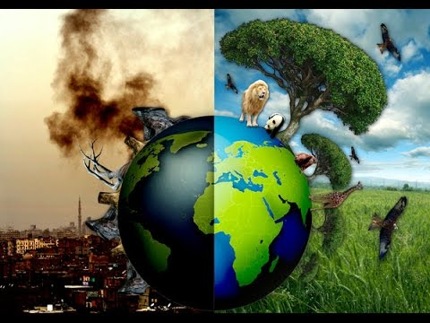 Pollution : Biggest World Problem! (Animation Video)
