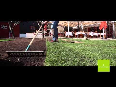 Rouleau videolike - Comment bien peindre au rouleau ...
