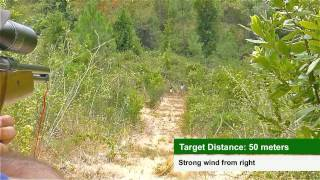 Field Target Portugal - Championship 2012 (3 Round)