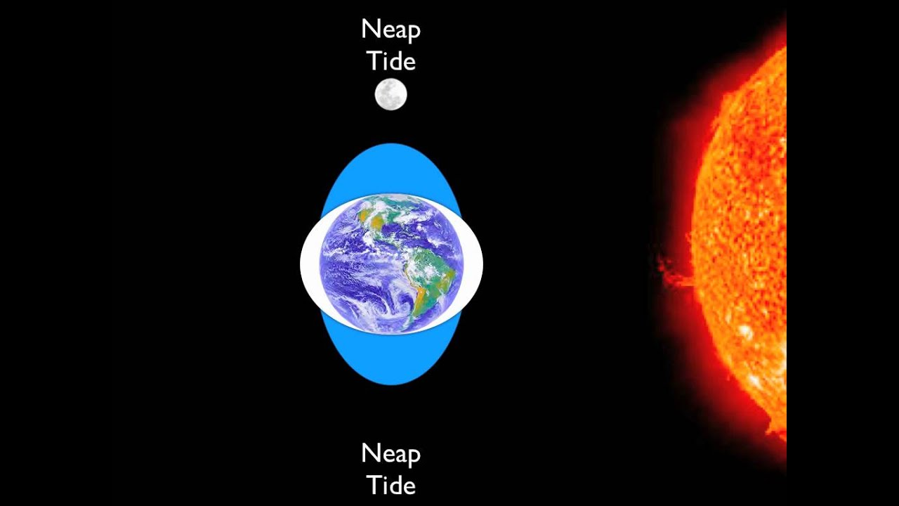 More to Learn How Are Tides Caused by Gravity of the Sun ...