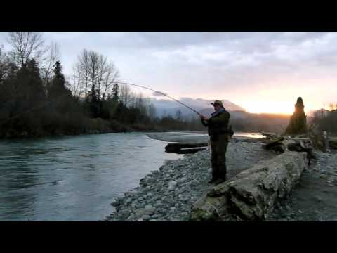 Born To Fish BC - Steelhead Fishing on the Vedder River