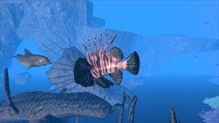 🐬Dolphin Family Simulator| Ultimate Ocean Simulator| By Gluten Free games
