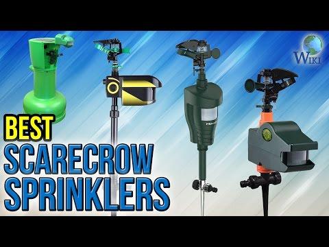 7 Best Scarecrow Sprinklers 2017