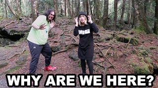 WE WALKED THROUGH A FOREST!... in Japan.
