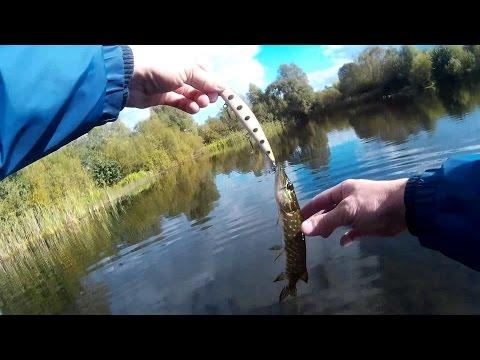 ловля щуки на спиннинг на немане видео