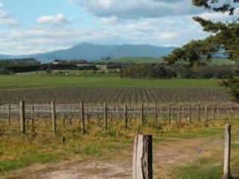 The Wine Country, Napa Valley & Australia, by Grape Networks