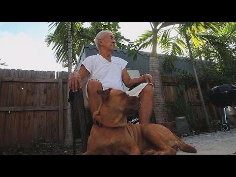 تجريب علاج جديد لإطالة عمر الكلاب – science