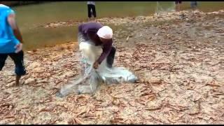 Mengambat ikan lampam