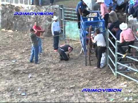 MONTA T= El Vaquero  J= Everardo González  EL TRÉBOL  Sto . Tomás Jal.  9-11-11 PRIMOVISION