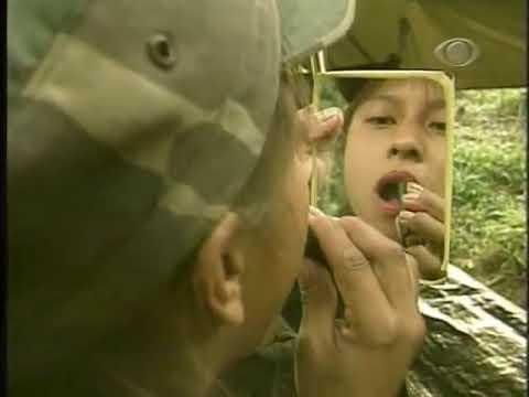 FARC II