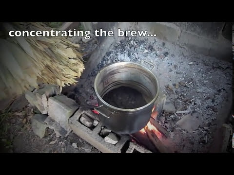 Cooking the Ayahuasca Brew