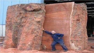 Extreme Dangerous Biggest Wood Sawmill Machine Working, Fastest Chainsaw Wood Cutting Machine Modern