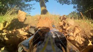 Rc brushless buggy adventure hd