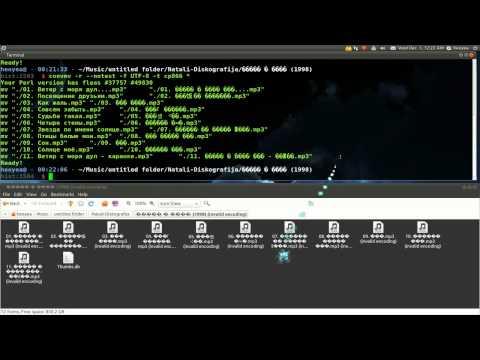 Convmv - Unicode Conversion - Ubuntu 10.10
