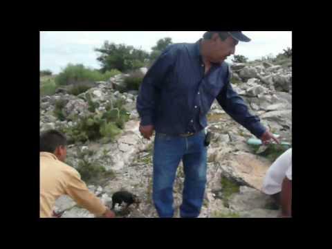 Ramon Corona Durango 2009