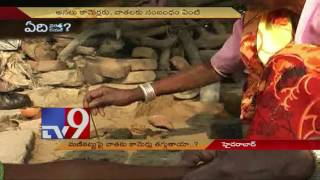 Cure for Jaundice without medication? - TV9