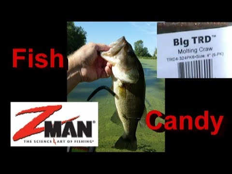 Z-Man Big TRDs are Fish Candy!