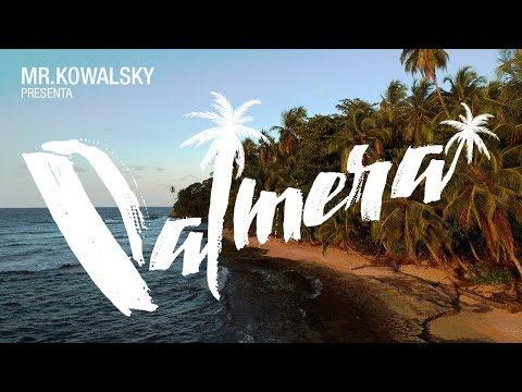 Mr.Kowalsky || Palmera