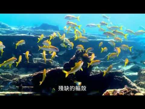 南海指環 東沙的沉船