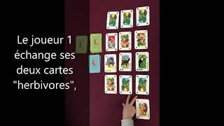 """Jeu de cartes """"Animazoo"""" de Djeco"""