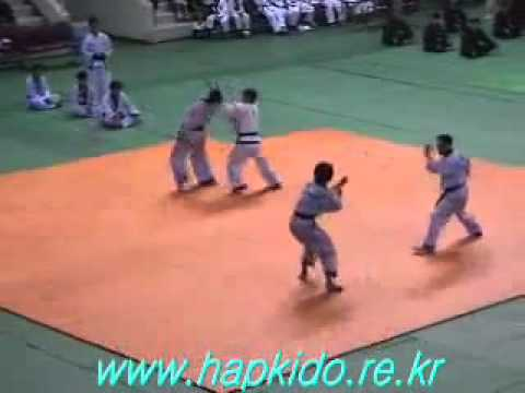 Korea Hapkido Tournament Image 1