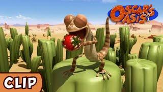 Oscar's Oasis - Bad Seed | HD | Funny Cartoons