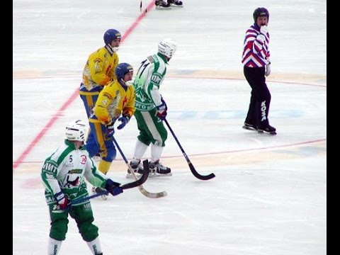 Popular in alpine countries, this sport is basically hockey on a soccer field-sized ice rink of up to 110