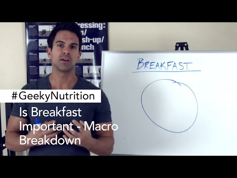 Is Breakfast Important - Macro Breakdown