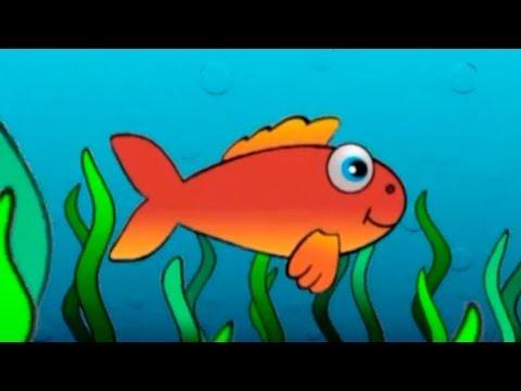 Çocuk şarkıları – Kırmızı balık gölde orijinal müzik ve sözleri