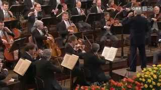 New Year Concert 2010 Vienna Philharmonique Orchestra-1part-