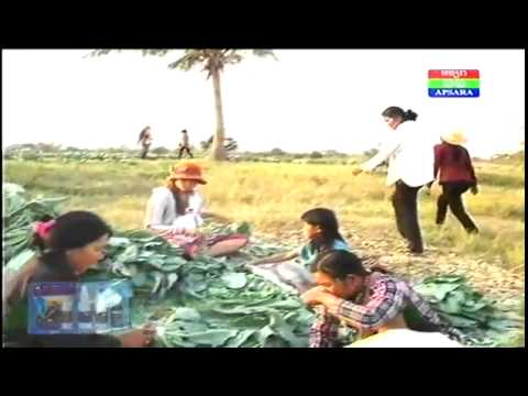 Cambodian Agriculture News