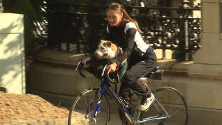 How a College Student Carried Her Dog on a Bike to Save Him From Wildfires