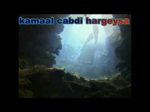 Gabay Timacade 1960 video