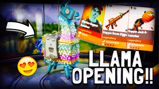 Insane 2nd Birthday Llama Opening in Fortnite Save The World