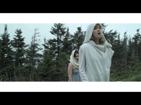 Thumbnail of video Dirty Projectors - Stillness Is The Move (2009)