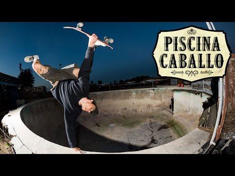 Piscina Caballo Video