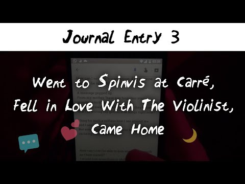 Journal Entry 3: Went to Spinvis at Carré, Fell in Love With The Violinist, Came Home