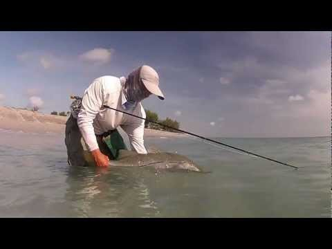 Fly fishing for snook at the beach
