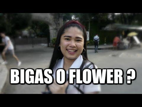 Bigas o Flower ? thumbnail