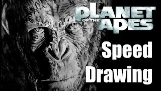 SPEED DRAWING #19 - War for the Planet of the Apes : Caesar