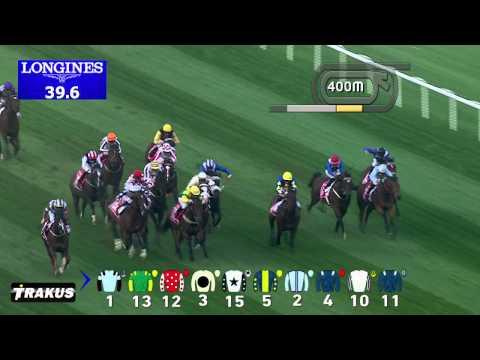 Vidéo de la course PMU MEYDAN SPRINT