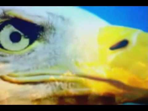 El Secreto de El Aguila