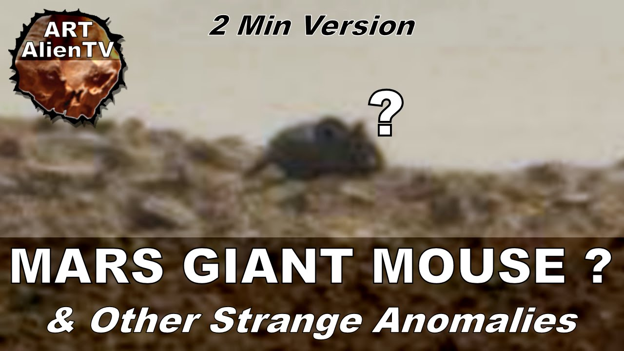 [MARS GIGANTIC MOUSE ? & Other Strange Anomalies. ArtAlienTV - 720p60] Video