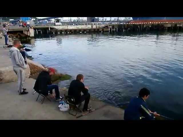 Туапсе. Майские выходные для рыбаков