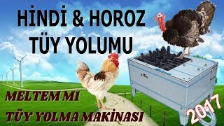 HİNDİ TAVUK KAZ TÜYÜ YOLMA MAKİNASI