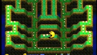 Pac-Man Arrangement(GBA)