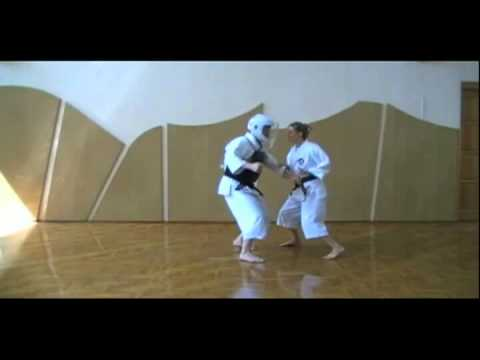 Shorinji Kempo Techniques - 2 Kyu Juho Image 1