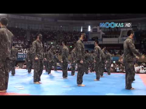 Taekwondo display by the Korean army at the 2013 Hammadang Image 1